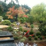 Passons aux plantations ... sous la pluie Bretonne
